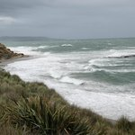 Wild coastline at Waipapa Point