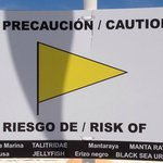 Beach sign - sea lice and other warnings