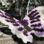 Цветастая бабочка