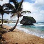 Barbados Mushroom rock - Soup Bowl