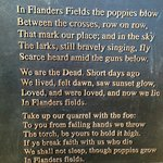 Poem - In Flanders Fields