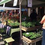 so many local produce vendors