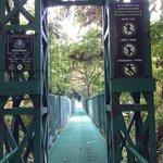 One of the hanging bridges