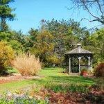 Clyburn Arboretum
