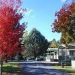Glorious autumn day at Lake Sambell Caravan Park