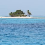 They will take you to Pigeon Cay to snorkel and have lunch on the beach