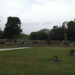 The gardens @ Beauvoir