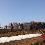 Foto de Farm Inn Animano-sato