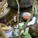"""Dale Chihuly's """"floats"""" with fishes"""