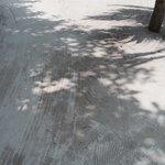 дорожки из белого песка