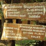 Singharaja Forest
