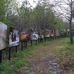 Expo photo dans le parc