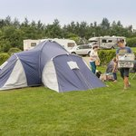 Large tent pitches