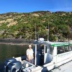 Chris the Eco Wanaka skipper at Mou Waho