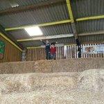 Fun times in the straw maze
