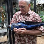 """Holding """"Baby"""" The Hyacinth Macaw"""