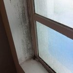 Mouldy window. Disgusting.