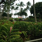 The view from our table at the Hukilau Lanai