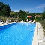 Large pool in beautiful surroundings 12 x 6 metres.