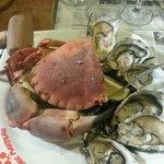 Crabe Marteau assiette