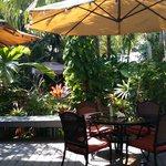 Gardens - breakfast area