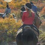 cavalgando nas cores do outono
