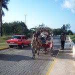 Horse carriage ride to Varadero with Billy and Chocolate
