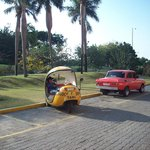 The coconut taxi