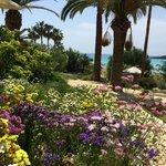 Der Garten zeigt alle Farben