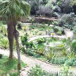 panorama part of the garden