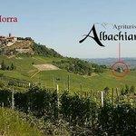 Agriturismo Albachiara Image