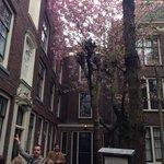 WeBikeAmsterdam