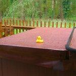 Hot tub duck