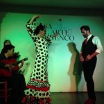 O desafio do Flamenco