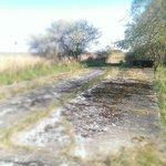 Historische Rundfahrt