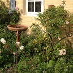 Outside Garden Room