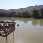 View of Rio Grande