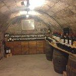 Vinhos e vinhos