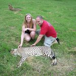 One of the four Cheetahs on the tour
