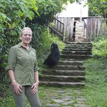 Gorillas in the lodge!