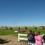 Skydivers landing area open for public viewing
