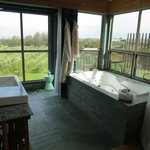 Bath and shower, looking over olive grove