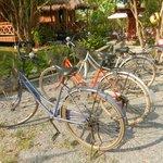 Fee bicycle use