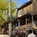 Cactus in Ghost Town Arizona