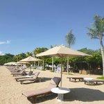 Beach chairs on the beach at La Taverna