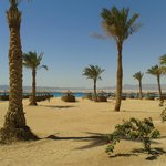 Soma Bay, Mar Rosso, Egitto, barriera corallina, spiaggia