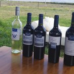 Sample of wines from La Azul