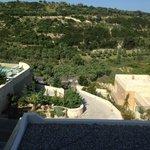 vue du parking sur l'hotel et les champs d'oliviers