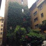 Em frente ao Lugarno tem esse prédio com esse paisagismo vertical