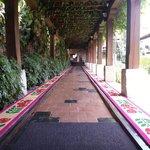 "Entrance way ""carpet"""